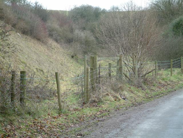 Footpath up Ham Hill