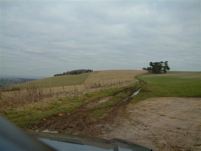 Top of Ham Hill, looking North East