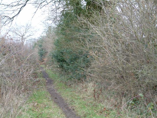 Footpath to Ballyack House