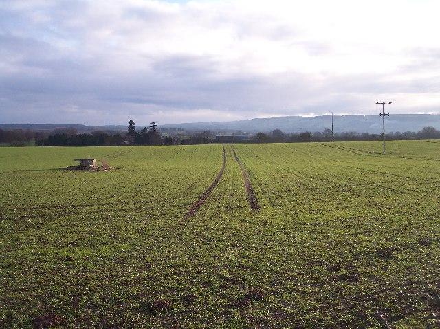 Tractor Tramlines and Site of Windpump