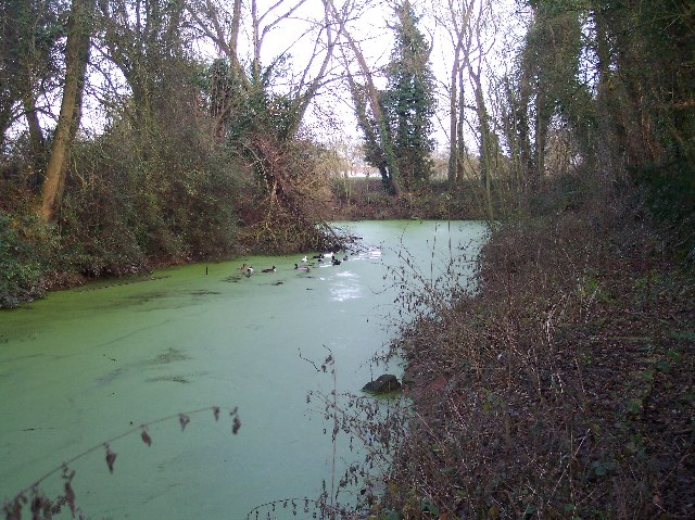The Hereford to Gloucester Canal
