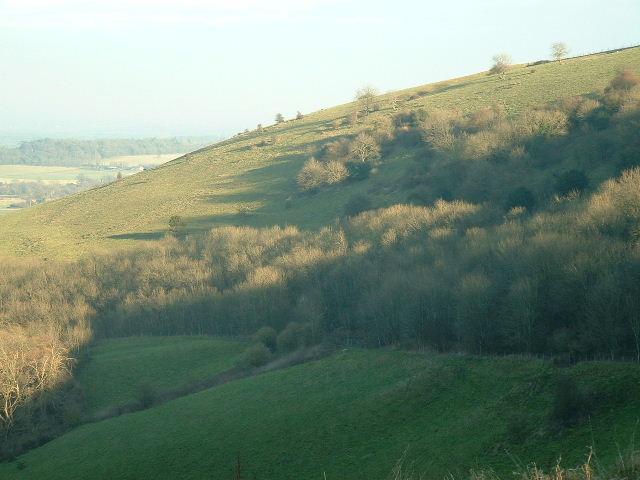 Just Slightly Warmer Sullington Hill