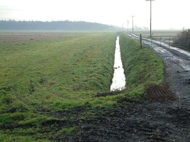 Track & Ditch