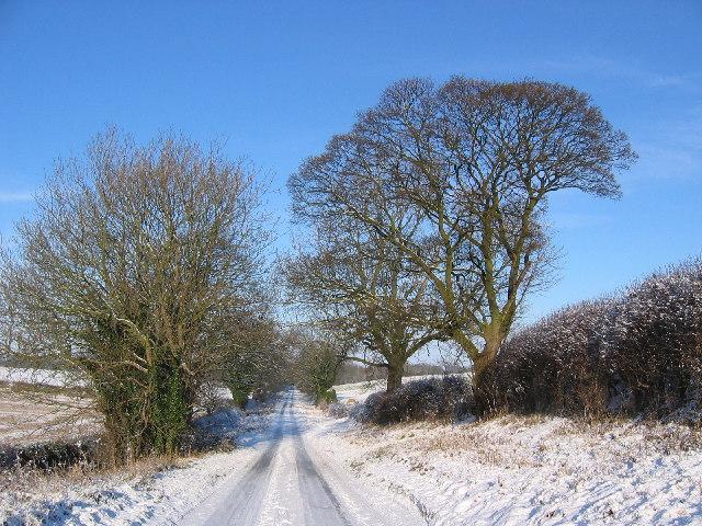 Road to Bishop Burton