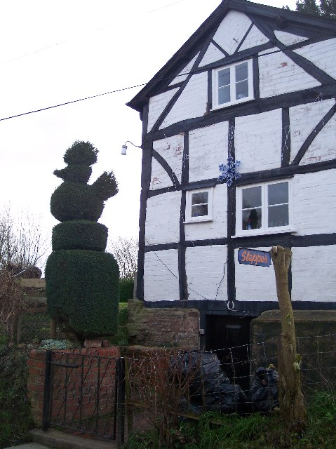 Topiary at Steppes, Little Tarrington