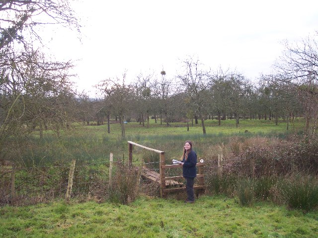 Footbridge into Grove Farm Orchard