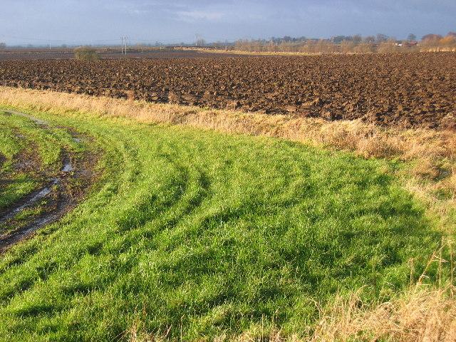 North Frodingham Farmland