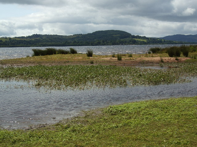 Loch Lomond Nature Reserve