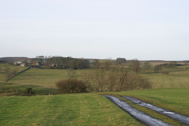 Horncastle, west of Kirkwhelpington