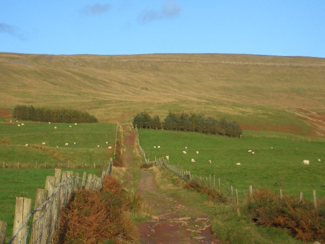 The Melmerby Low Scar track by Meikle Awfell