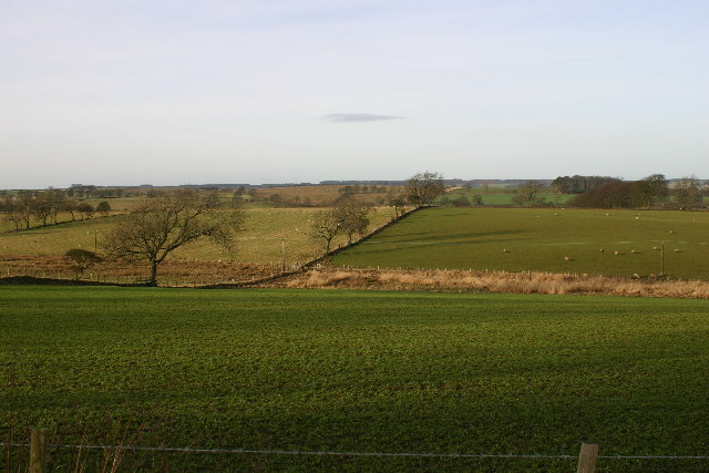 Farmland near Merry Shiels on B6342