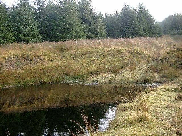 Small pond near the head of Hall's Burn