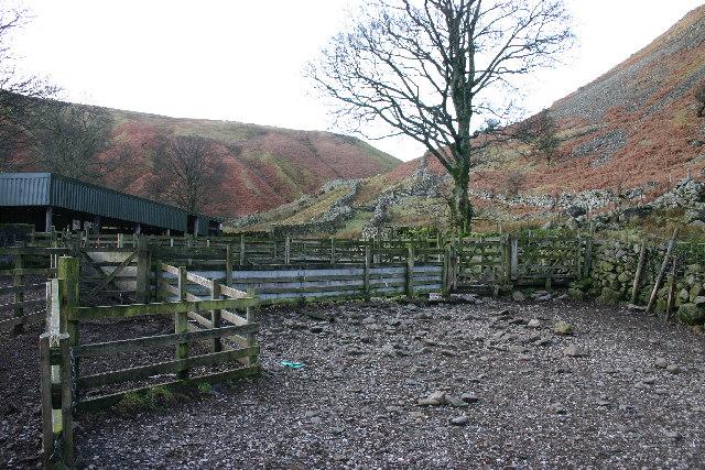 Sheep Pens, Dowthwaitehead