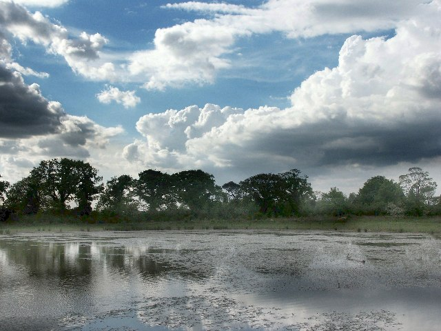 Nature Reserve near Hagnaby Lock