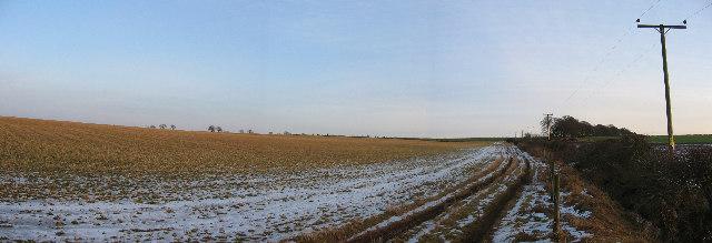 Fields near Tibbermore