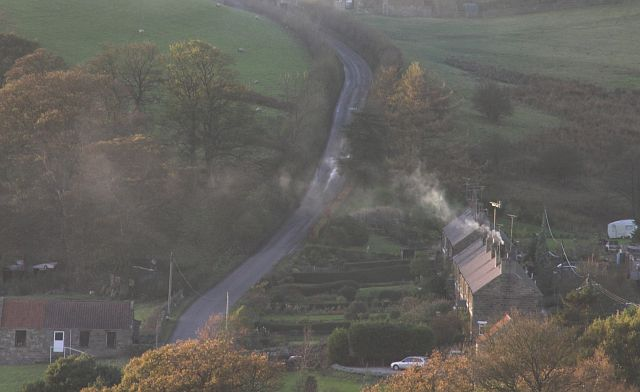 School row Rosedale