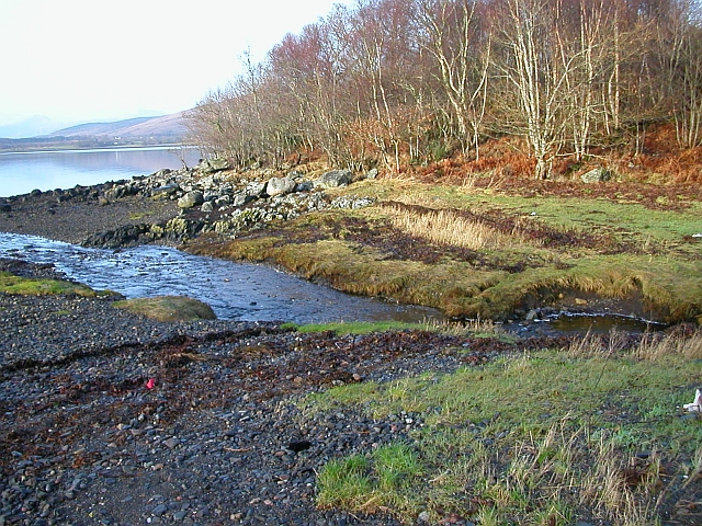 Burn Flowing into Loch Creran