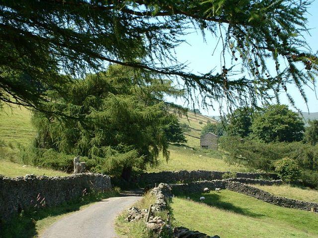 Walls, barn, lane and  footpath