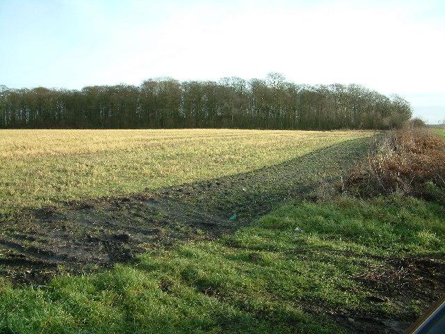 Bryrer's Plantation