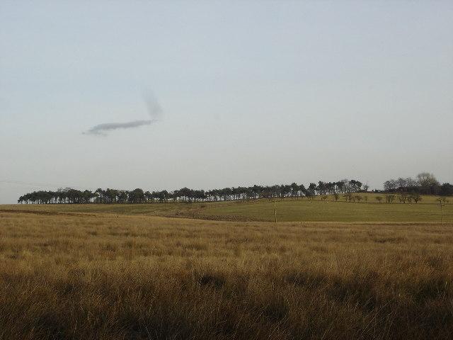 Moorland near Limerigg