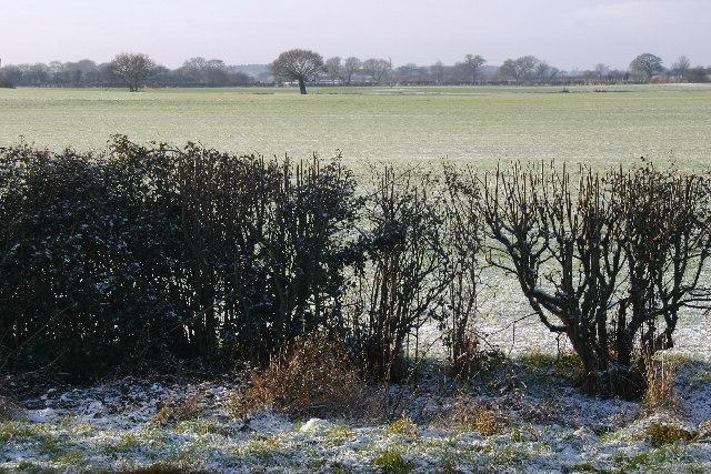 Farmland near Low Well Farm