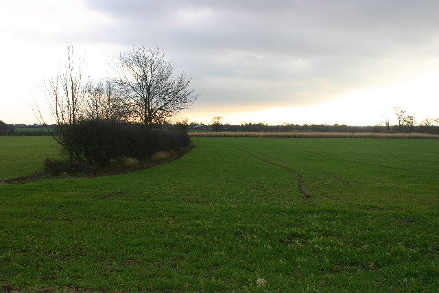 Farmland north of Tickton