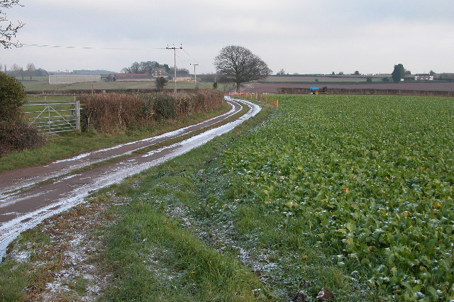Track from Overton Farm, near Brampton Abbots