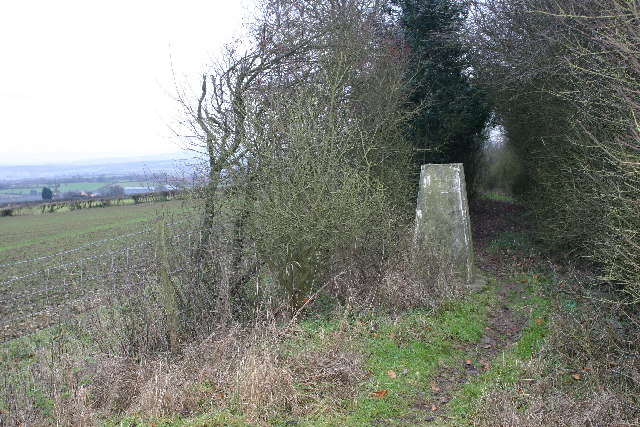 Marcle Hill trig