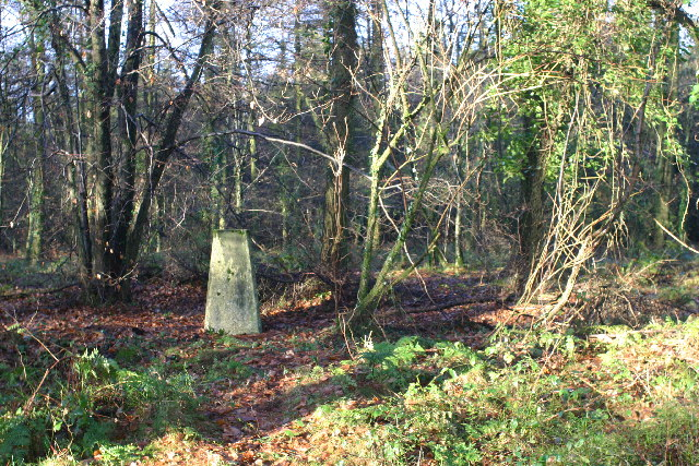 Wentwood trig