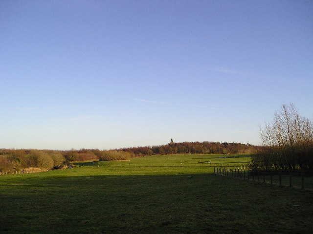 Country Park