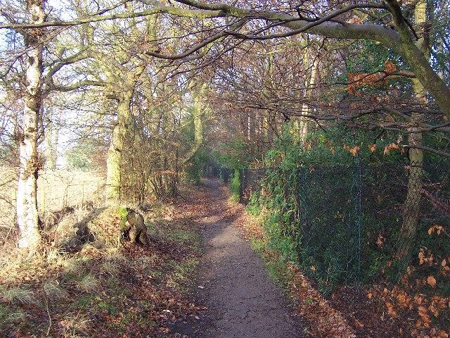 Harrogate Ringway Path behind Harlow Carr Gardens