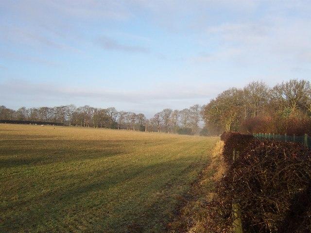 Field beside B6162
