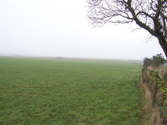Empty Landscape in Haverah Park