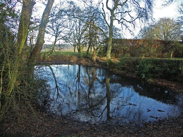 Pond, Bledlow Ridge