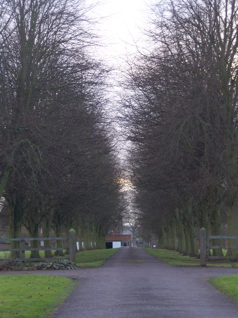 Avenue to Whitwick Manor