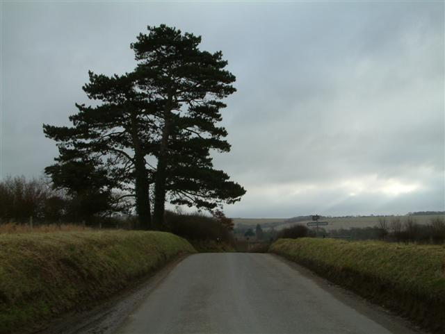 The top of Cutting Hill