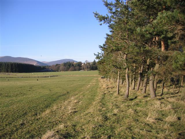 Greenah Crag Farm.