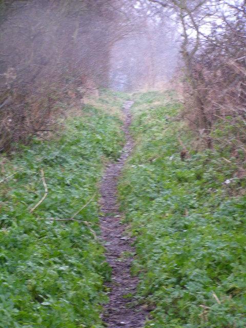 Green Way