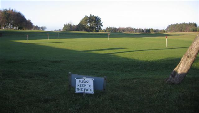 The putting area.