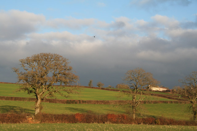 Silverton: Overleigh, with helicopter