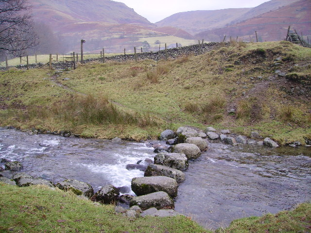 Stepping Stones Tongue Gill