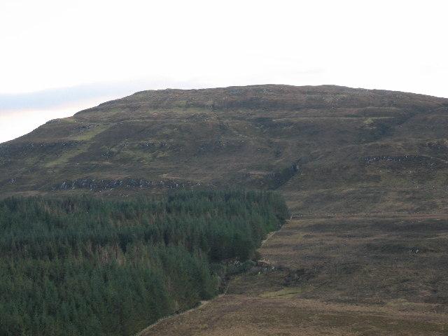 Forest on Beinn a Sga