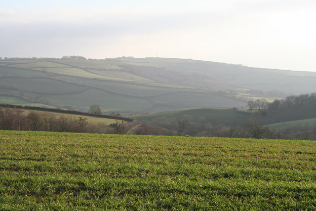 Silverton: near Overleigh