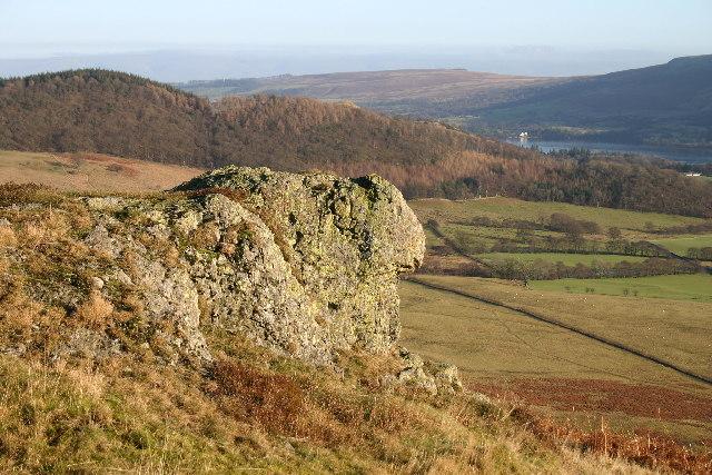 Rock Looking Like a Sheep