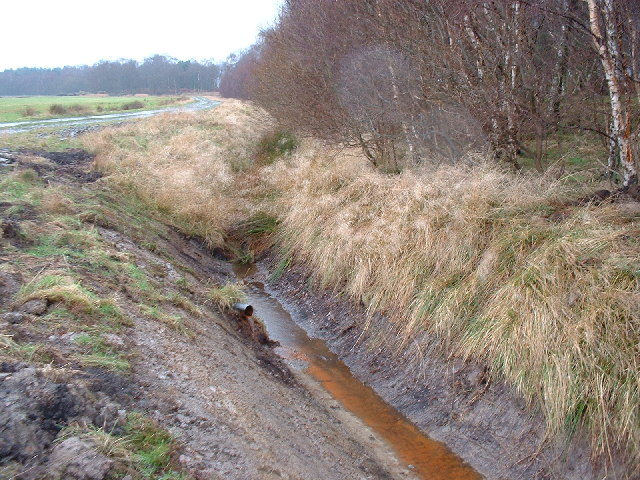 Drainage Ditch, Flanders Moss