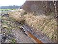 NS6597 : Drainage Ditch, Flanders Moss by Robert Bone