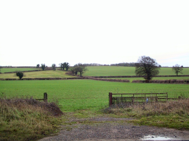 Open Farmland