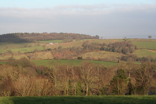 Bradninch: near Billingsmoor