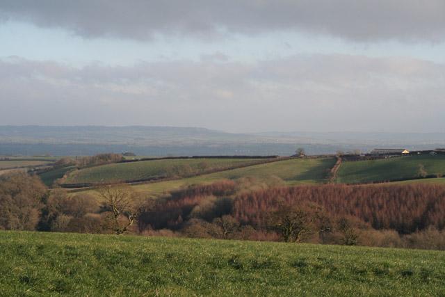 Bradninch: overlooking Rode Moor