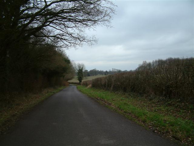 The Road to Tangley